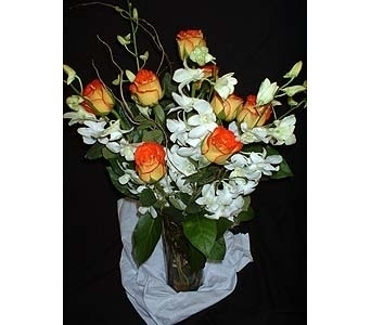 Circus Roses with White Orchids in Dallas TX, Z's Florist