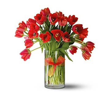 Teleflora's Radiantly Red Tulips � Premium in San Francisco CA, Fillmore Florist