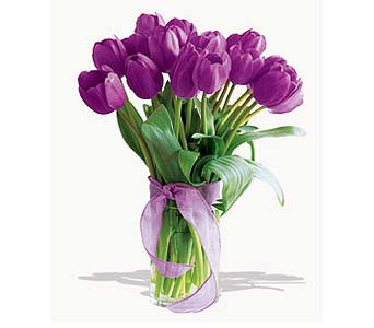 Spring Tulips - Deluxe Purple in San Francisco CA, Fillmore Florist