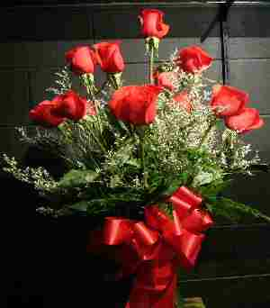 12 Red Riveria Roses Vas in Panama City FL, Panama City Florist & Gifts, Inc.