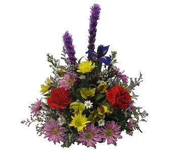 Bright & Cheery Williamsburg - Designed All-Around in Wyoming MI, Wyoming Stuyvesant Floral