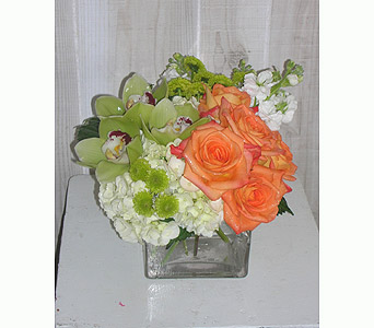 Orange Envy in Dallas TX, Petals & Stems Florist