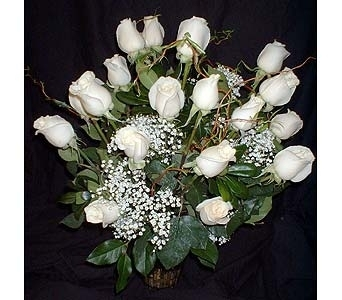 24 White Roses in Dallas TX, Z's Florist