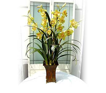 Silk Cymbidium Orchid Series 5 in Lake Forest CA, Cheers Floral Creations