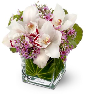 Teleflora's Lovely Orchids in Largo FL, Rose Garden Flowers & Gifts, Inc
