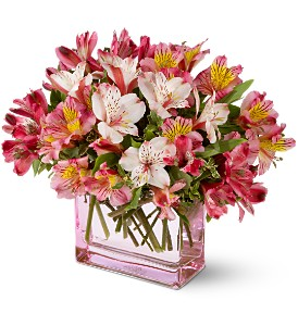 Teleflora's Always Alstroemeria in Concord NC, The Village Blossom