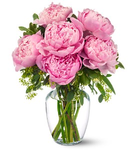 Peonies in Pink in Bend OR, All Occasion Flowers & Gifts