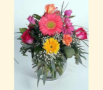 Roses and Gerbera Daisies in Southampton PA, Domenic Graziano Flowers