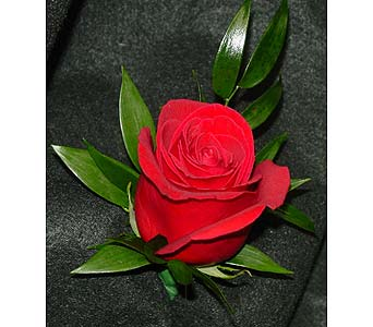 Red Rose in Massapequa Park NY, Bayview Florist & Montage  1-800-800-7304