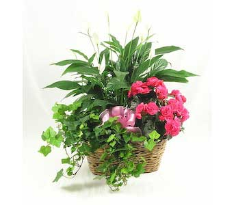 Mother''s Garden<br>Prices from $64.95 in Wichita&nbsp;KS, Tillie's Flower Shop
