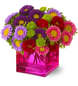 Mad about Magenta in Lexington KY, Oram's Florist LLC