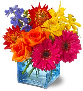 Calypso Local and Nationwide Guaranteed Delivery - GoFlorist.com