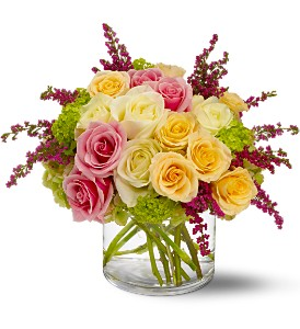 Enchanted Roses in Scranton PA, McCarthy Flower Shop<br>of Scranton
