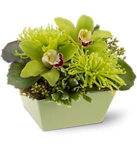 Go Green in Mount Morris MI, June's Floral Company & Fruit Bouquets