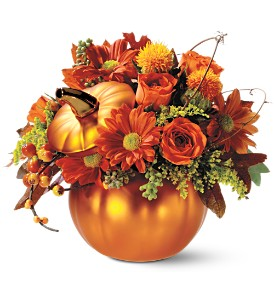 Teleflora's Petite Pumpkin Bouquet in Fayetteville AR, The Showcase Florist, Inc.