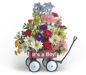 Baby's First Wagon (Boy) in McHenry IL, Locker's Flowers, Greenhouse & Gifts