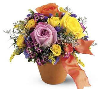A terra-cotta pot filled with the garden's sweet and precious blooms. Orange, yellow and pink roses with delicate greens. From Plaza Flowers, your King of Prussia Florist.