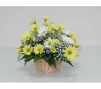 Basket of Sunshine in Indianapolis IN, Gillespie Florists