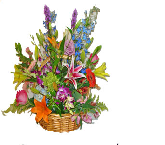 Dutch Garden Basket in Naples FL, Gene's 5th Ave Florist