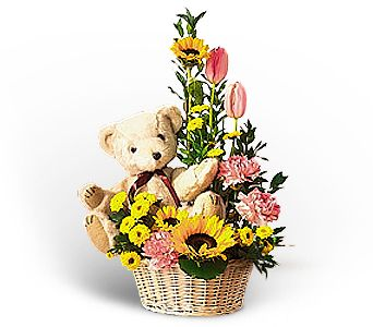 Basket of Bear with Blooms in Rock Island IL, Colman Florist