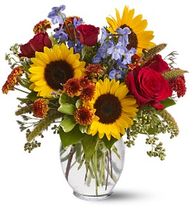Sunny Skies in Derry NH, Backmann Florist