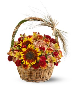 Harvest Basket in Tucson AZ, Throop Florist