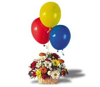 Balloons and Blossoms Basket in Brownsburg IN, Queen Anne's Lace Flowers & Gifts