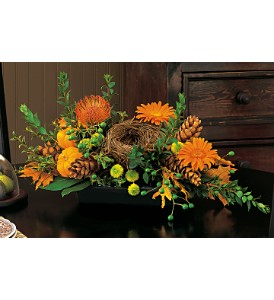 Visions of Autumn Centerpiece in Santa Clara CA, Citti's Florists