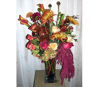 Come on Eileen in Dallas TX, Petals & Stems Florist