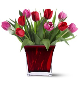 Teleflora's Tulips of Love Bouquet in Littleton CO, Littleton's Woodlawn Floral