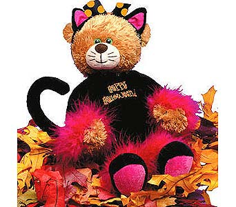 HB6 ''Zsa Zsa'' Halloween Dressed Bear in Oklahoma City OK, Array of Flowers & Gifts