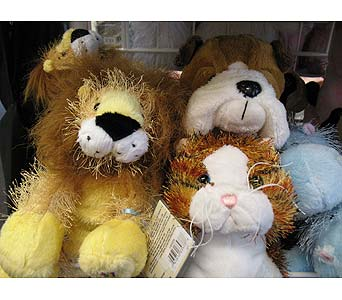 We offer Webkinz in Lacey WA, Olympic Flower Market