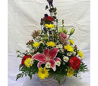 Flowers of the Season in Orange City FL, Orange City Florist