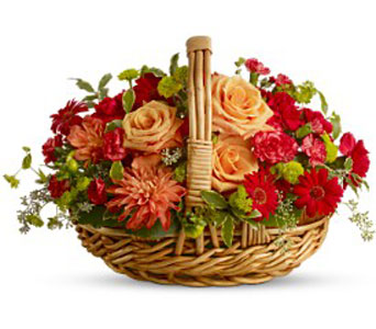 Spanish Garden Basket in Norristown PA, Plaza Flowers
