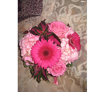 Pink Color Therapy in Massapequa Park NY, Bayview Florist & Montage  1-800-800-7304