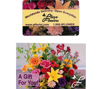 Plaza Flowers Gift Card in Norristown PA, Plaza Flowers