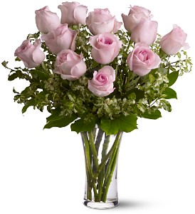 Dozen Pink Roses in Campbell CA, Citti's Florists