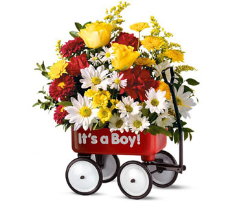 Baby''s First Wagon - It''s a Boy in McLean VA, MyFlorist