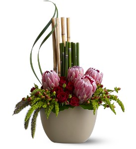 Zen Protea in Bradenton FL, Ms. Scarlett's Flowers & Gifts