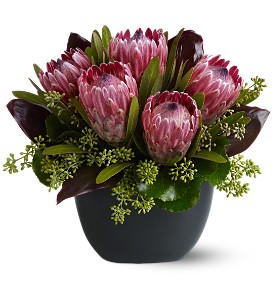 Positively Protea in Waukegan IL, Larsen Florist