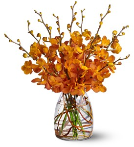 Orchid Embers in Largo FL, Rose Garden Flowers & Gifts, Inc