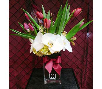 Heavenly Tulips in Santa Monica CA, Santa Monica Florist