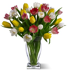 True Love Tulips in Tyler TX, Country Florist & Gifts