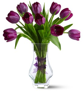 Royal Tulips, flowershopping.com