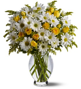 Teleflora's Daisy Days Deluxe in Friendswood TX, Lary's Florist & Designs LLC