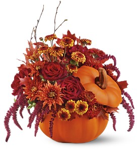 Teleflora's Bewitching Pumpkin Bouquet in Orange CA, LaBelle Orange Blossom Florist