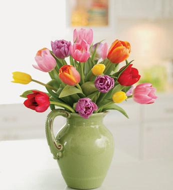 Pitcher Perfect Tulips in Burlington NJ, Stein Your Florist