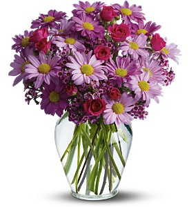 Delightfully Daisy Deluxe in Belford NJ, Flower Power Florist & Gifts