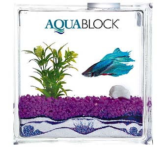 AquaBlock in Norwich CT, McKenna's Flower Shop