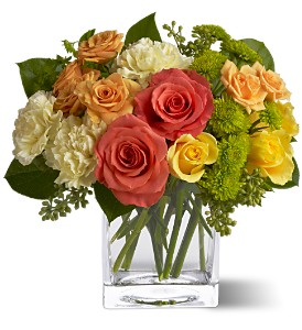 Teleflora's Citrus Splash in Towson MD, Radebaugh Florist and Greenhouses